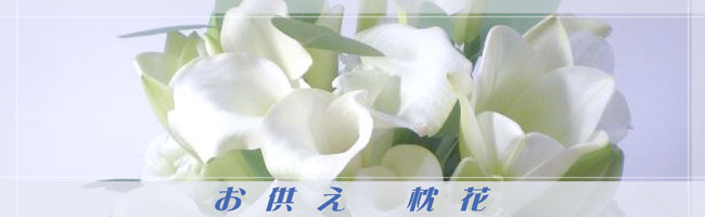 pillow_flower_header_photo.jpg